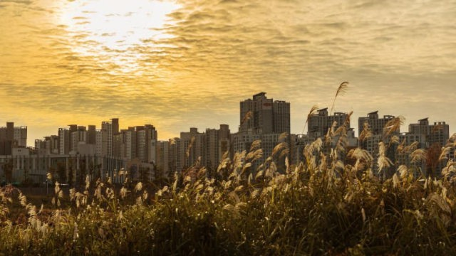 Seúl de Corea del Sur